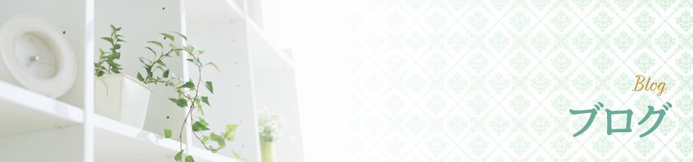 尾道のエステブログ またまた増えた家族^^(ブログ)